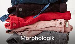 Colección Morphologik